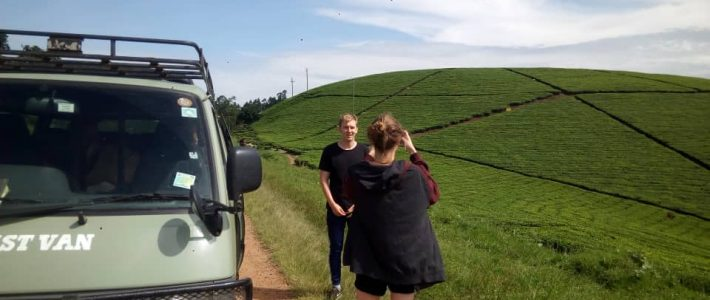Take a hired self-drive car to a destination of choice! – Uganda safari News